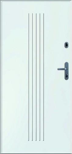 Drzwi Gerda WX 10 NATURA
